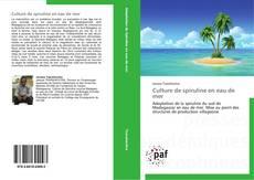 Bookcover of Culture de spiruline en eau de mer