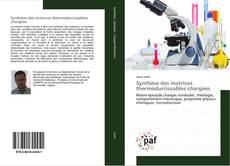 Bookcover of Synthèse des matrices thermodurcissables chargées