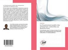 Le financement public des entreprises culturelles au Burkina Faso kitap kapağı