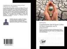 L'exploitation des briques cuites et leurs impactes sur la population的封面