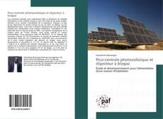 Pico-centrale photovoltaïque et digesteur à biogaz kitap kapağı