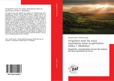 Portada del libro de Irrigation avec les eaux saumâtres dans le périmètre Zelba 1 (Mahdia)