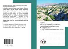 Couverture de Néolithisation et Diversités culturelles dans la Haute Mésopotamie