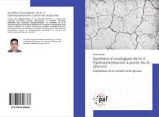 Bookcover of Synthèse d'analogues de la 4-hydroxyisoleucine à partir du D-glucose