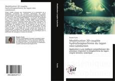 Bookcover of Modélisation 3D couplée hydro/biogéochimie du lagon néo-calédonien
