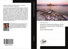 Bookcover of Risques hydroclimatiques dans le bassin versant de l'Ouémé à Bétérou