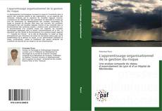 Bookcover of L'apprentissage organisationnel de la gestion du risque