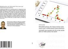 Bookcover of Modélisation de l'épuration des eaux par infiltration-percolation