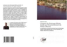 Couverture de L'Impact du Drainage Minier Acide sur l'Environnement de Nador (Maroc)