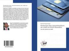 Bookcover of Protection des consommateurs de crédit en Droit Rwandais