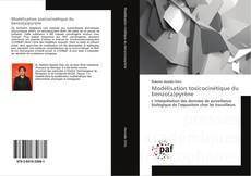 Bookcover of Modélisation toxicocinétique du benzo(a)pyrène