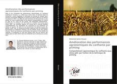 Bookcover of Amélioration des performances agronomiques du carthame par priming