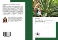 Bookcover of Les séquelles de l'esclavage à Cuba et en France