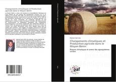 Buchcover von Changements climatiques et Production agricole dans le Moyen Bénin