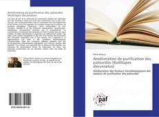 Bookcover of Amélioration de purification des palourdes (Ruditapes decussatus)