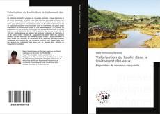 Couverture de Valorisation du kaolin dans le traitement des eaux