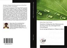 Bookcover of Gestion Intégrée des Ressources en Eau face au changement climatique
