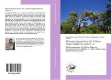 Bookcover of Micropropagation du Chêne-liège (Quercus suber L.)