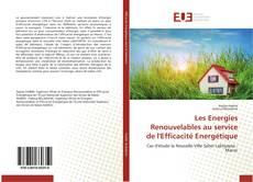Capa do livro de Les Energies Renouvelables au service de l'Efficacité Energétique