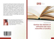 Buchcover von Gestion des déchets et utilisation des eaux naturelles à Conakry