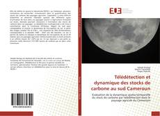 Couverture de Télédétection et dynamique des stocks de carbone au sud Cameroun