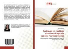Pratiques en stratégie dans les entreprises sociales multisociétaires的封面