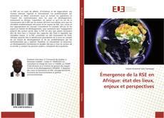 Copertina di Émergence de la RSE en Afrique: état des lieux, enjeux et perspectives
