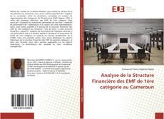 Обложка Analyse de la Structure Financière des EMF de 1ère catégorie au Cameroun