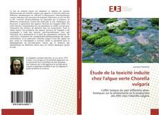 Copertina di Étude de la toxicité induite chez l'algue verte Chorella vulgaris