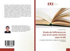 Bookcover of Etude de l'efficience en eau et en azote minéral pour le blé