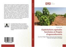 Exploitations agricoles familiales et Projets d'agrocarburants的封面