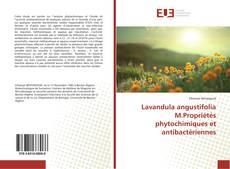 Обложка Lavandula angustifolia M.Propriétés phytochimiques et antibactériennes