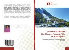 Portada del libro de Sous les Ruines de Séchilienne, l'expert, l'élu et le villageois