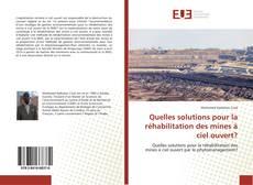 Capa do livro de Quelles solutions pour la réhabilitation des mines à ciel ouvert?