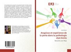 Bookcover of Angoisse et expérience de la perte dans la pathologie état-limite