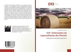 Bookcover of VLP- Valorisation de Lignocellulose des Plantes