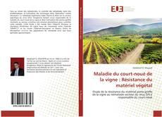 Couverture de Maladie du court-noué de la vigne : Résistance du matériel végétal