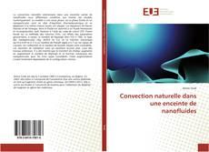 Bookcover of Convection naturelle dans une enceinte de nanofluides