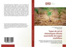 Bookcover of Types de sol et chémotypes d'huile essentielle de Lippia multiflora