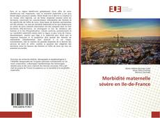 Morbidité maternelle sévère en Ile-de-France的封面