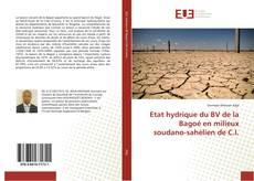 Bookcover of Etat hydrique du BV de la Bagoé en milieux soudano-sahélien de C.I.