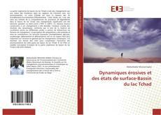 Dynamiques érosives et des états de surface-Bassin du lac Tchad kitap kapağı