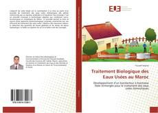 Bookcover of Traitement Biologique des Eaux Usées au Maroc