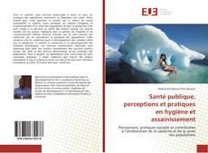 Обложка Santé publique, perceptions et pratiques en hygiène et assainissement