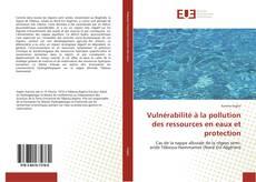 Vulnérabilité à la pollution des ressources en eaux et protection kitap kapağı