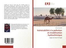 Vulnérabilité à la pollution et modélisation hydrochimique kitap kapağı