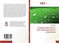 Bookcover of Irrigation déficitaire à l'eau salée de l'orge en milieu aride