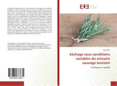 Copertina di Séchage sous conditions variables du romarin sauvage tunisien