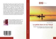 Bookcover of La pêche dans le lac Tchad