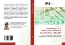 Dynamique de la chromatine en réponse aux dommages de l'ADN kitap kapağı